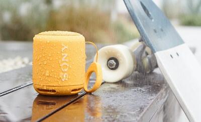 Sony Portable Wireless Bluetooth (SRS-XB10)