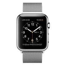 Apple Watch Stainless Steel Case with Milanese Loop 38mm